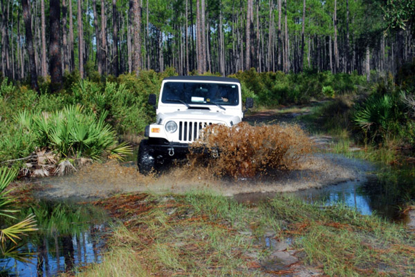 Splish Splashing Jeep Taking a Mud Bath!